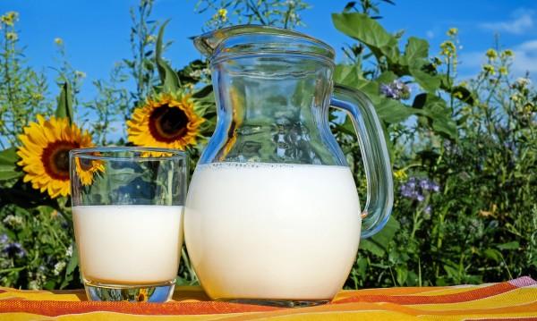 6 заместители на кравето мляко