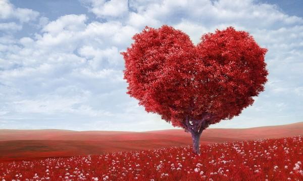 Любовна есен чака 3 зодии! Ето кои са те