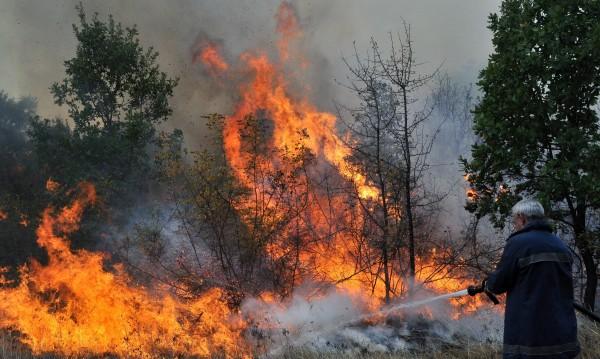 500 декара гори и лозя горят край Баня