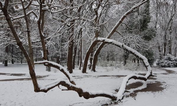 Сняг и отрицателни температури в Габровско