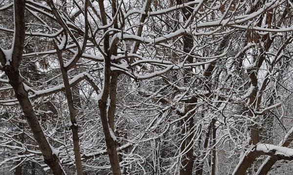 Дъждовно-снежна неделя, валежите се усилват вечерта