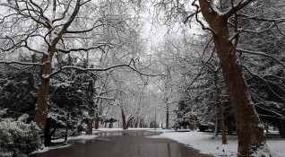 Сняг, дъжд... Валежи в почти цялата страна, жълт код в 20 области