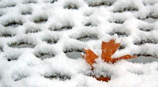 Четвъртък: На изток дъжд, на север – сняг!