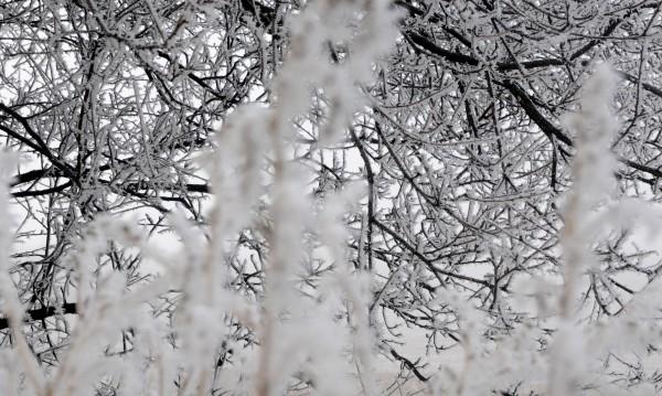 АПИ предупреди: Иде сняг, тръгвайте подготвени!