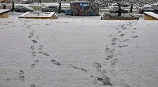Валежите продължават, в Западна България - сняг