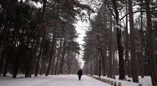 Равнопоставеност!? На 1000 мъже се падат 1060 жени в България