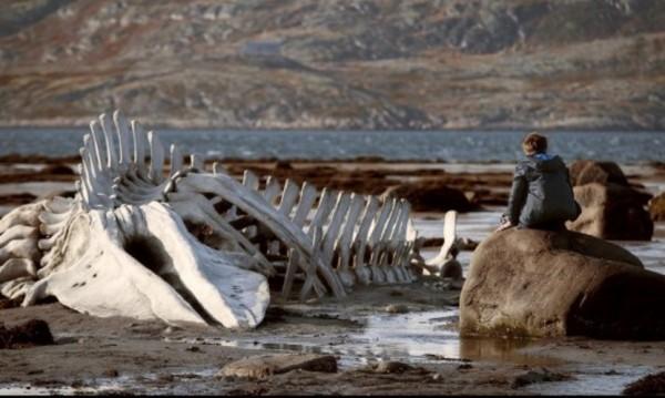 """Човекът, убит от държавата: """"Левиатан"""""""