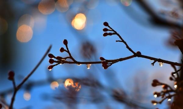 Вторникът – студен и ветровит! След това се затопля