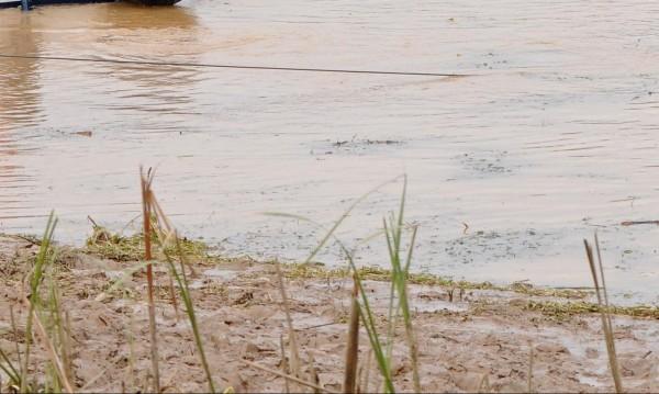"""Мъртва риба в язовир """"Мандра"""" в Бургас, взеха проби от водата"""