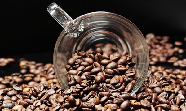 Катастрофа: 100 сорта на изчезване, ще останем ли без кафе?