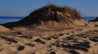 След разкопаните дюни: Багери кръжат и край местността