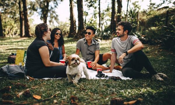 Зодиите през 2019: Какво ги чака в приятелството?