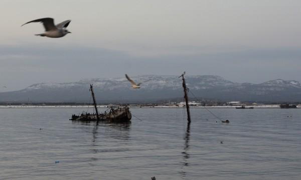 Те са богати на.... Островите, които тровят японско-руските отношения