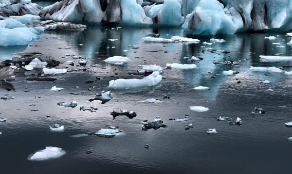 Удавилият се 15-годишен искал селфи... върху леда