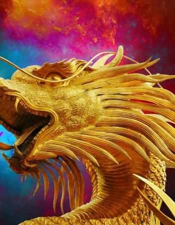 Годината на Жълтата Земна Свиня: Какво да очакват Драконите?