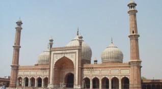 От Тадж Махал до тигри и антилопи: Без будилник в Индия!