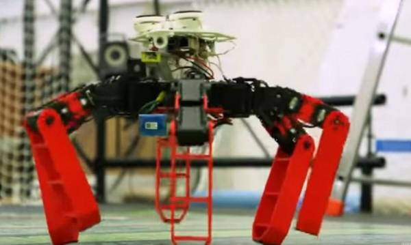 Робот, вдъхновен от мравките, се ориентира по небето