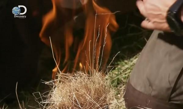 Огън и ядене на жаби в Рила! Ще разследваме Беър Грилс за снимки у нас