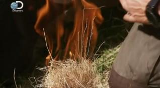 В дивото: Как е оцелял Беър Грилс там, където хората се разхождат?