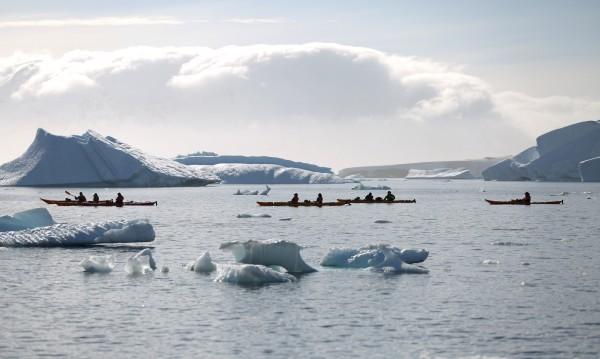 Учени алармират: Възможно е крокодили да заживеят в Арктика!