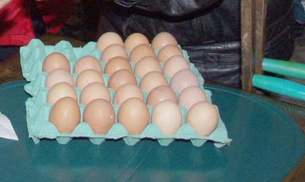 Полезни или вредни са яйцата? Дебат на нов глас