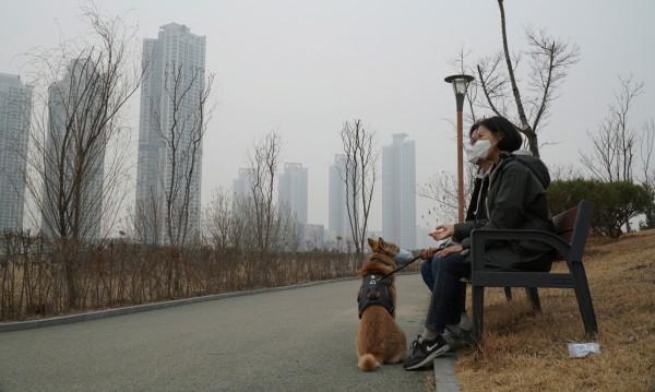 Мръсният въздух съкращава живота на децата с 20 месеца