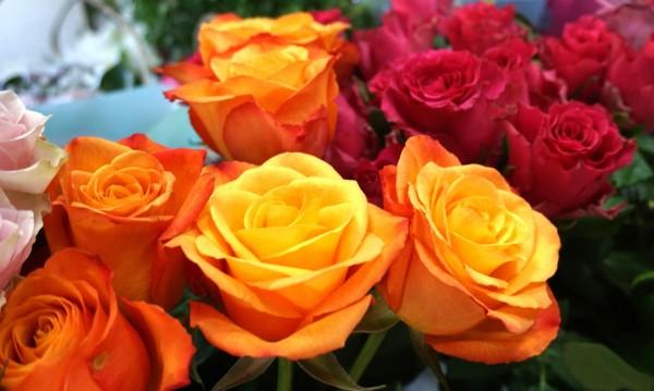 Рози, гербери, лилии... НС дава 190 000 лв. за китки и вода