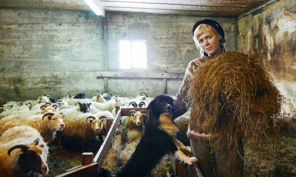 Моделът, който заряза подиума и се превърна в... овчарче!