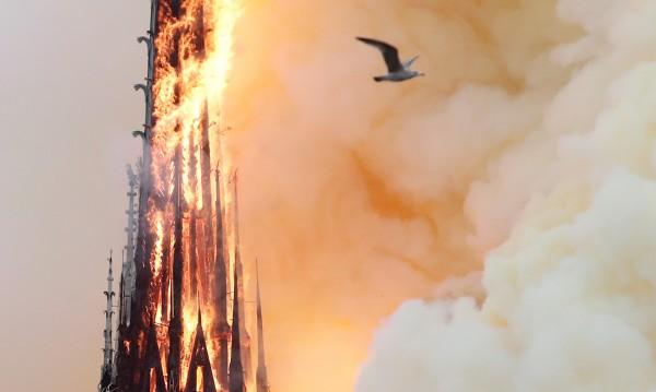 И звездите страдат след пожара в Нотр Дам