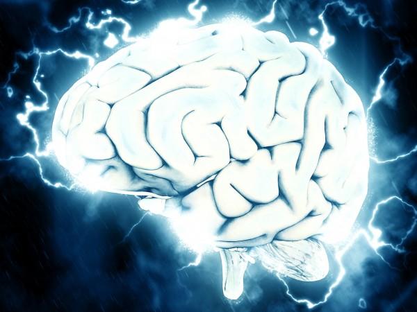 Научен екип от САЩ успя да съживи клетки в мозъците
