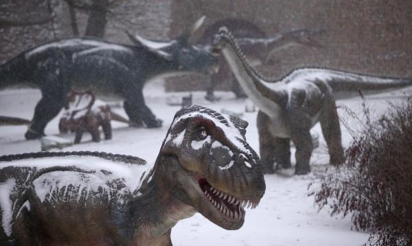 Откритие! Намериха масов динозавърски гроб в Аржентина