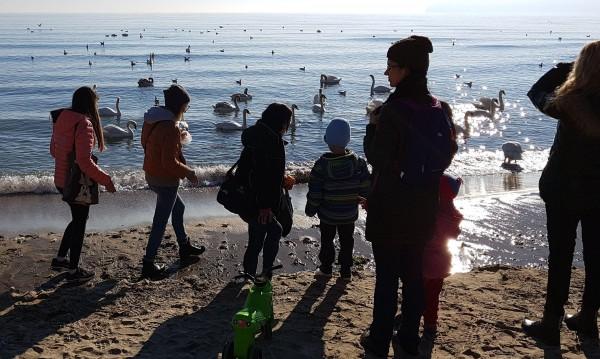 София продължава да расте, Варна гони Пловдив по население