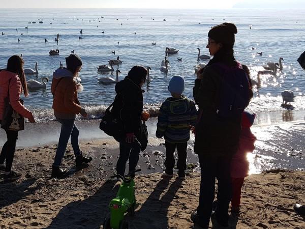 Снимка: София продължава да расте, Варна гони Пловдив по население