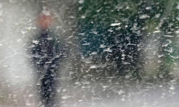 Най-много сигнали, свързани с бурята - от Плевенско