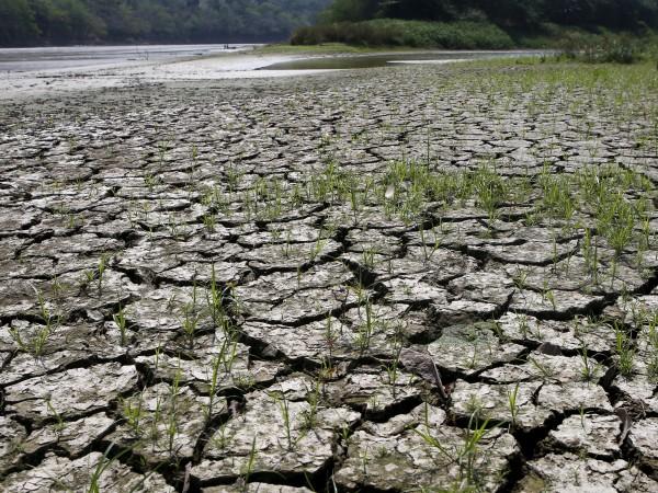 Австралийски учени направиха реконструкция на Ел Ниньо за предишните 400