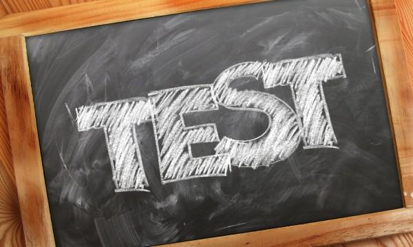 Нито един роден кандидат за ЕП не прие IQ тест
