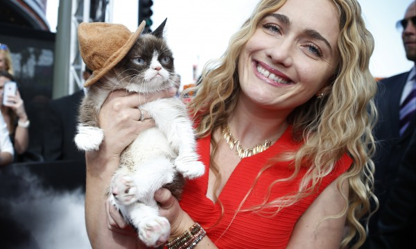 Почина начумерената котка Grumpy Cat