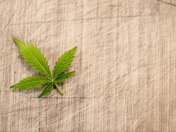 Сигнал за наличие на марихуана към полицията в Монтана накара