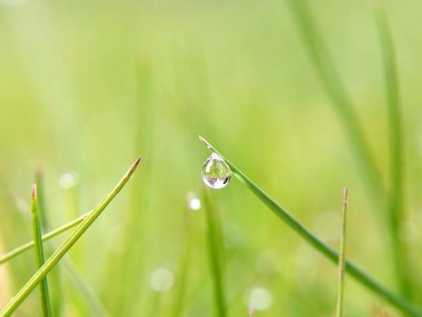 През нощта и утре ще се развива купеста и купесто-дъждовна