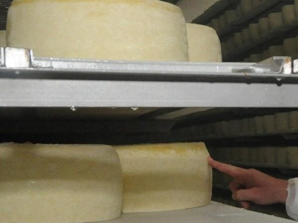 Химията все повече превзема сиренето, кашкавала, киселото мляко и маслото