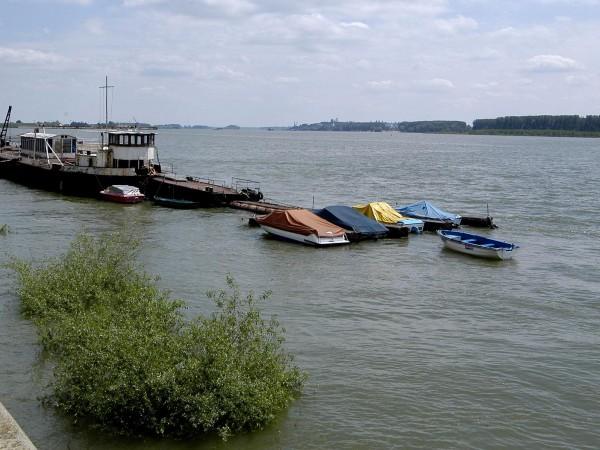 Река Дунав при Видин се покачи за последното денонощие с