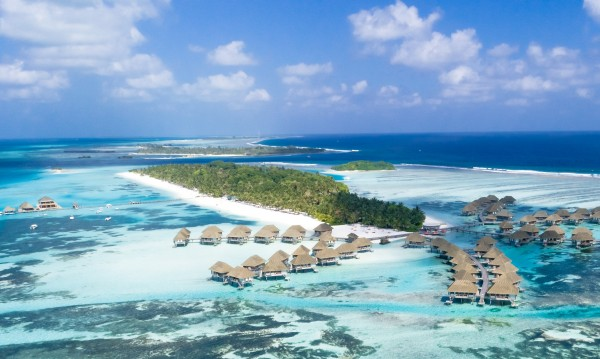 Мечтаната работа: Грижа за костенурки на Малдивите