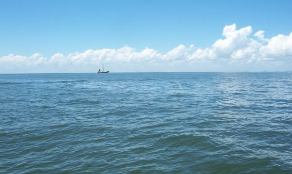 Част от Мексиканския залив се превръща в мъртва зона