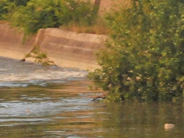 15-годишно дете се е удавило във водите на река Огоста