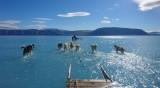 Гренландия: Светват всички червени лампи за глобалното затопляне