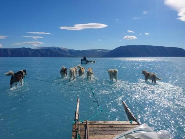 Рекордни температури, преждевременно топене на ледовете - още преди настъпването