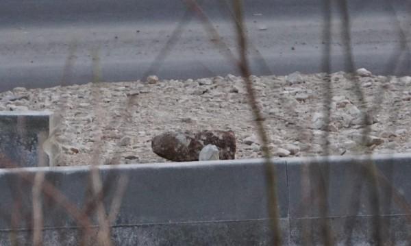 Откриха два снаряда в София, единият в мазе в центъра