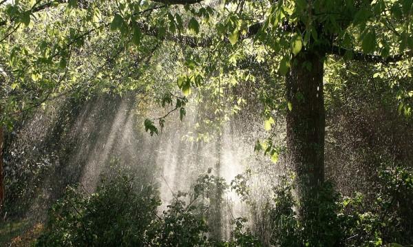 Слънце, дъжд, че и градушка във вторник