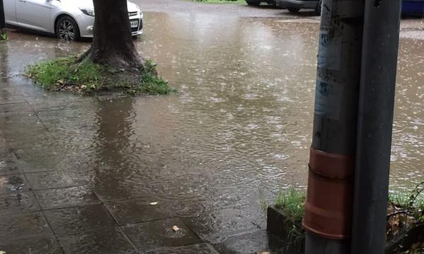 Helpbook сигнали: Силна музика, агресивни кучета, наводнена улица