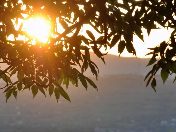 На 2 юли ще е слънчево, след обяд - горещо.